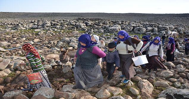 gurbuzler-koyu-sakinleri-su-bekliyor (4)