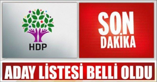 HDP Şanlıurfa Adayları Belli Oldu