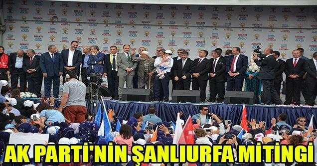 AK Parti'nin Şanlıurfa Mitingi