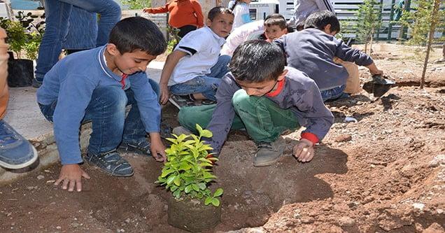 Öğrenciler Okul Bahçesine Fidan Dikti