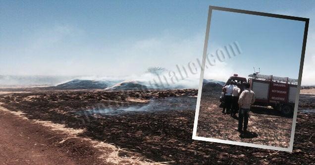 Siverek'te 120 ton saman yandı!