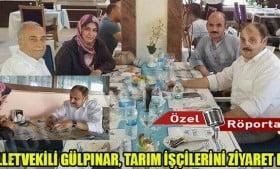 Milletvekili Gülpınar tarım işçilerini ziyaret etti