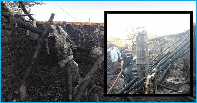 6 ton saman yangında kül oldu!
