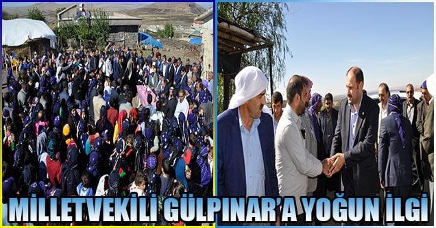 Milletvekili Gülpınar'a yoğun ilgi