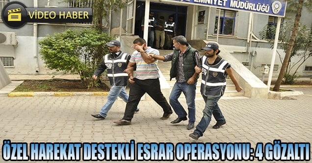 Siverek'te esrar operasyonuna 4 gözaltı