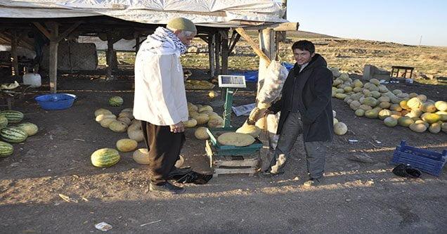Siverek'te alternatif tarım bilinci gelişiyor