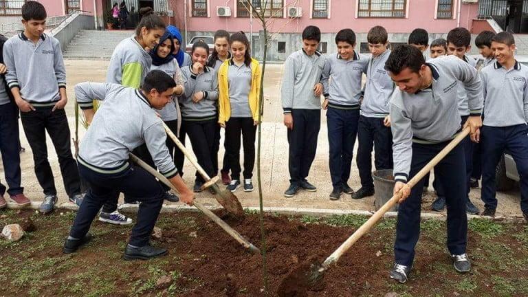 Öğrenciler Okul Bahçelerini Yeşillendirdi