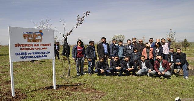 Siverek'te Barış ve Kardeşlik Ormanı