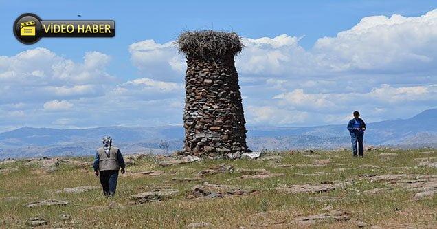 Köylüler 'Leylek Yuvası' için kule yaptı
