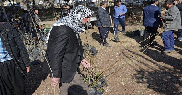 Siverek'te Halka Ücretsiz Fidan Dağıtıldı