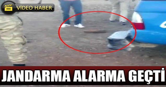 Siverek Kırsalında Bulundu: Jandarma Alarma Geçti