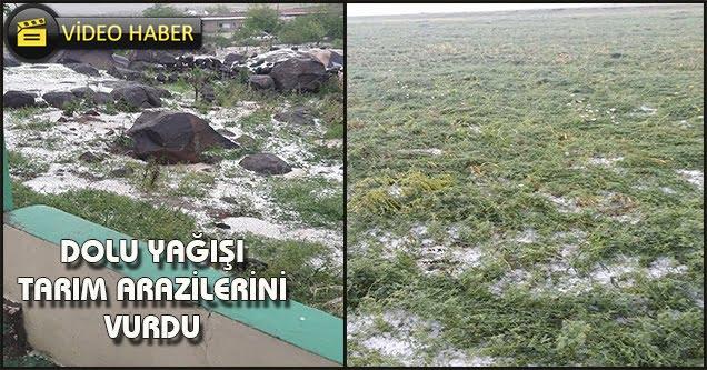 Dolu tarım arazileri vurdu