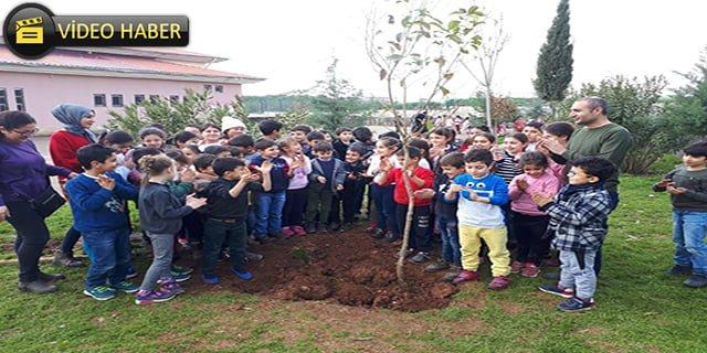Minikler, öğretmenleriyle ağaç dikti