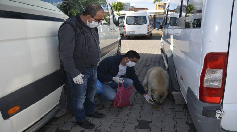 Hayvan severler sokak hayvanlarını unutmadı